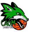logo du club caom basketball