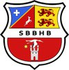 logo du club Soues Barbazan Bigorre hb