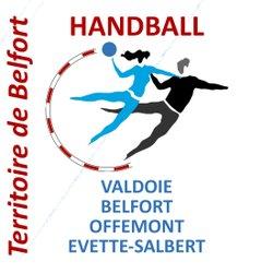 Entente Sportive du Territoire de Belfort HandballL'Entente Sportive du Territoire de Belfort Handball utilise très bien le module twitter pour renseigner des infos en temps réel sur son site