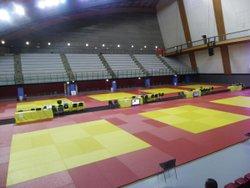 Résultat judo 1/4 final critérium IDF 260317