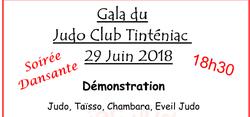 1er GALA du Tinténiac Judo Club