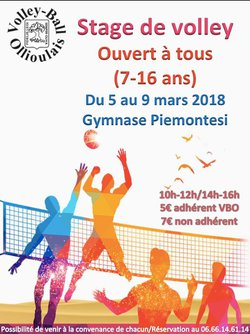 stage de volley-Ball du 5 au 9 mars 2018