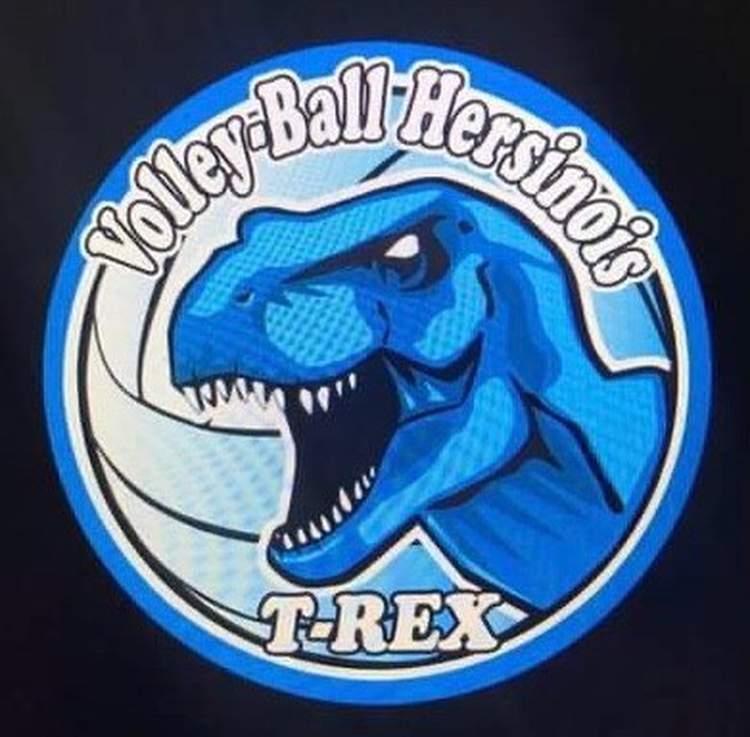Volley-Ball HersinoisRevivez les évènements marquants du club sur son site internet