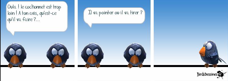 pétanque birds
