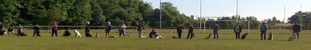 Club canin de Liverdun : site officiel du club d'athlétisme de LIVERDUN - clubeo