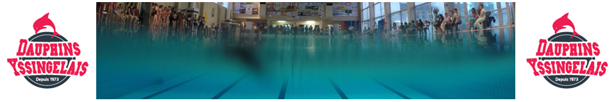 Dauphins yssingelais site officiel du club de natation for Piscine yssingeaux
