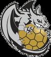 logo du club DRAGUIGNAN VAR HANDBALL