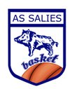 logo du club AS SALIES