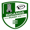 logo du club BIGANOS RUGBY XV