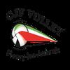 logo du club CJF FLEURY LES AUBRAIS VOLLEY