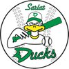 logo du club DUCKS DE SARLAT