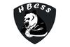 logo du club Handball Club Saint Symphorien (Gironde)
