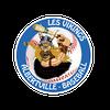 logo du club Les Vikings