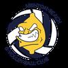 logo du club Menton Beach & Volley-Ball Club