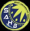 logo du club SENART Agglomération HANDBALL