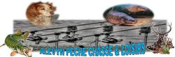 logo du club ALEVYN PECHE CHASSE ET LOISIRS