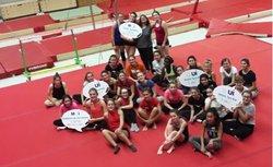 Les gymnastes reprennent le chemin du praticable ...