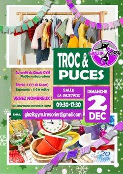 TROC et PUCES le 2 décembre 2018