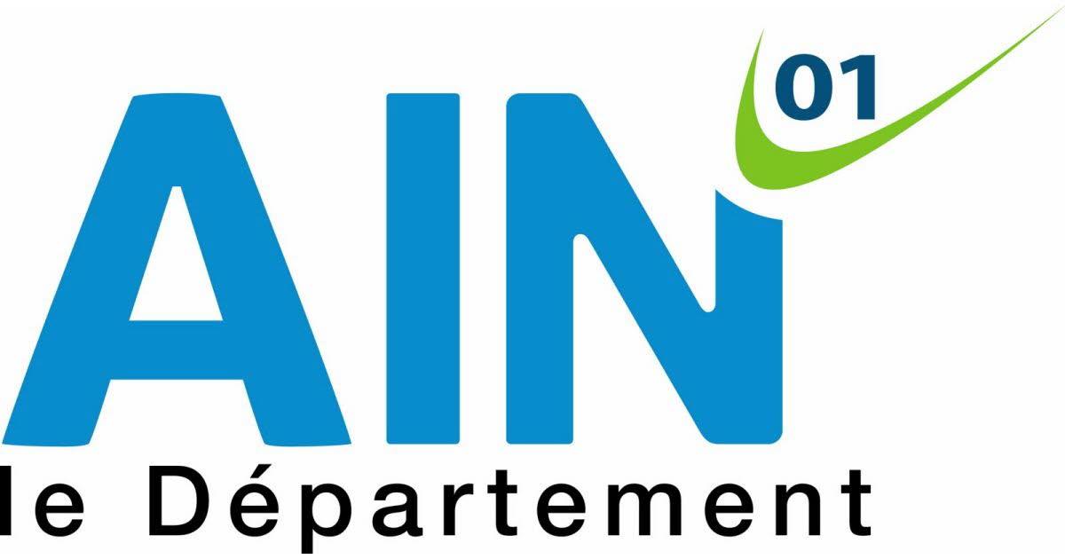 logo AIN.jpg