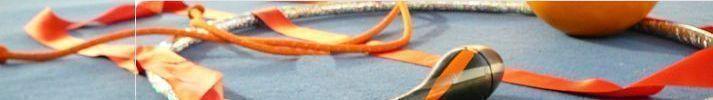 GYMNASTIQUE RYTHMIQUE GUEBWILLER : site officiel du club de gymnastique de GUEBWILLER - clubeo