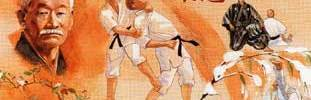 JUDO CLUB  88 CHARMES : site officiel du club de judo de CHARMES - clubeo