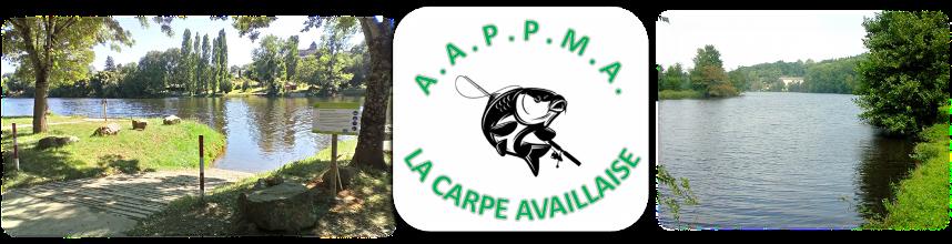 AAPPMA LA CARPE AVAILLAISE : site officiel du club de pêche de AVAILLES LIMOUZINE - clubeo