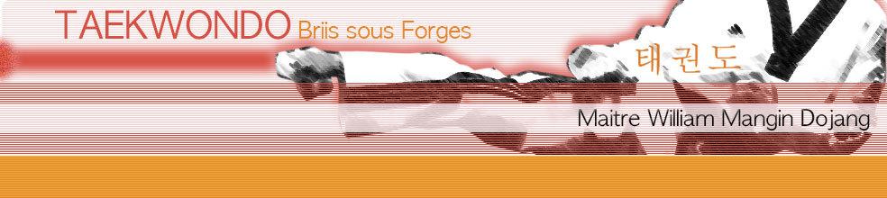Taekwondo Briis sous Forges : site officiel du club de taekwondo de BRIIS SOUS FORGES - clubeo